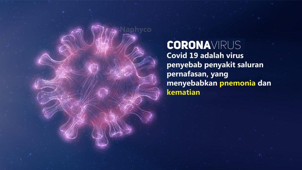 virus corona 19